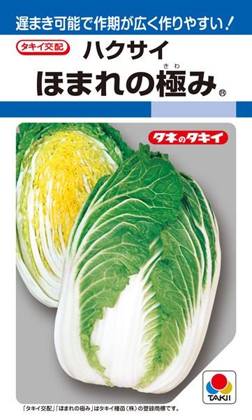 黄芯ハクサイ 種 『ほまれの極み』 ペレットL5000粒 タキイ種苗