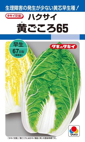 黄芯ハクサイ 種 『黄ごころ65』 ペレットL5000粒 タキイ種苗