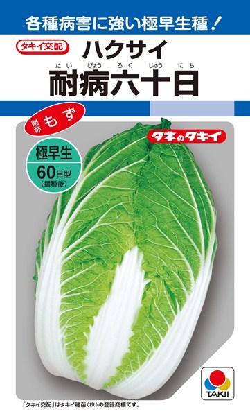 ハクサイ 種 『耐病六十日』 1dl タキイ種苗