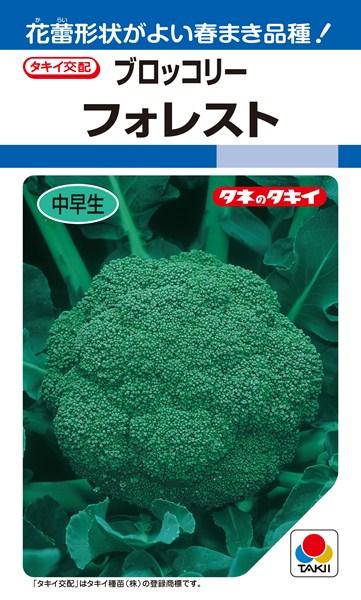 ブロッコリー 種 『フォレスト』 ペレットL5000粒 タキイ種苗