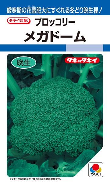ブロッコリー 種 『メガドーム』 20ml タキイ種苗