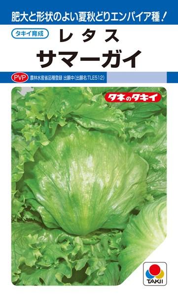 結球レタス 種 『サマーガイ』 ペレットL5000粒 タキイ種苗