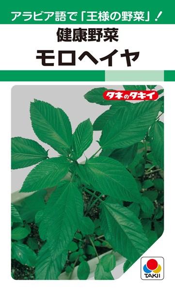 モロヘイヤ 種 『モロヘイヤ』 1dl タキイ種苗
