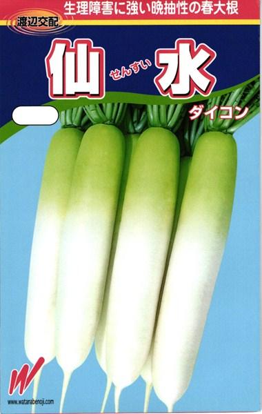 春どりダイコン 種 『仙水(せんすい)』 2dl 渡辺農事