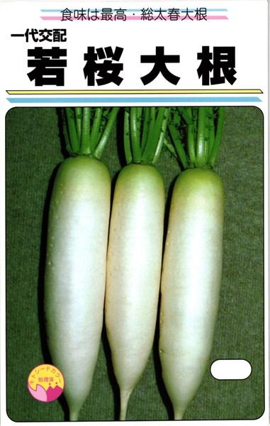 ミニダイコン 種 『若桜』 2dl 渡辺農事