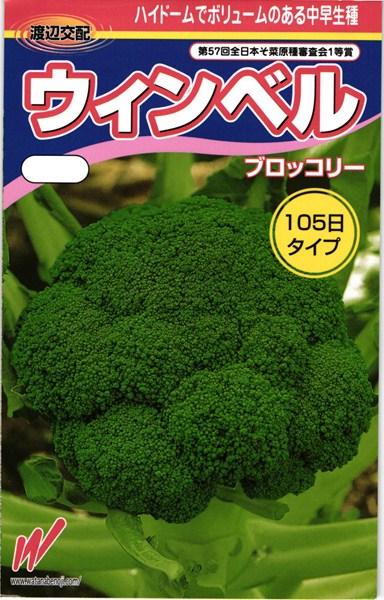 ブロッコリー 種 『ウィンベル』 コート5000粒 渡辺農事