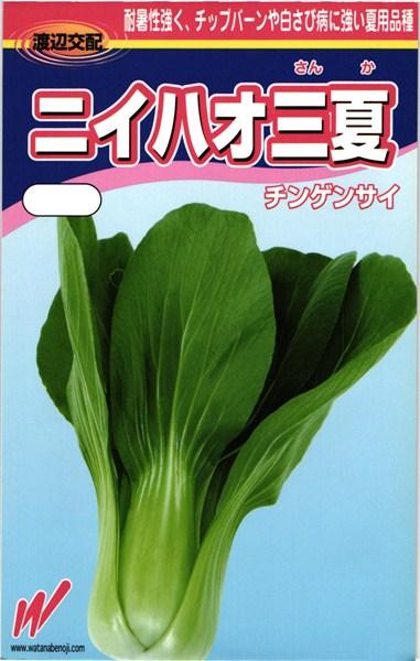 チンゲンサイ 種 『ニイハオ三夏(さんか)』 2dl 渡辺農事