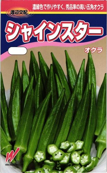 オクラ 種 『シャインスター (NX-AE801)』 1L 渡辺農事