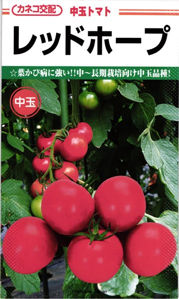 カネコ種苗 トマト レッドホープ 1000粒