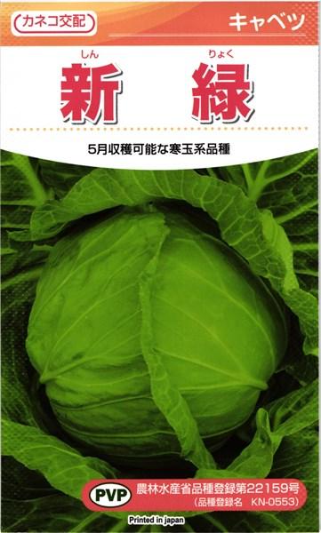 推奨 脇芽が少なく栽培しやすく球締まりの良い5月収穫の寒玉系品種 カネコ種苗 キャベツ コート5000粒 新緑 2020