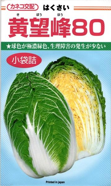 カネコ種苗 ハクサイ 白菜 黄望峰80 コート5000粒