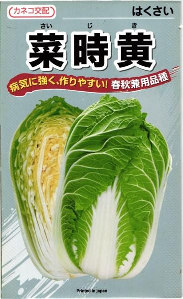カネコ種苗 ハクサイ 白菜 菜時黄 20ml