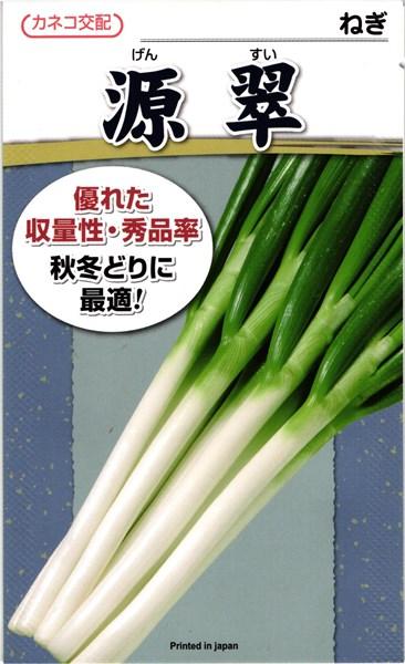 カネコ種苗 ネギ 源翠 2dl