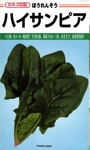 カネコ種苗 ホウレンソウ ほうれん草 ハイサンピア   M 3万粒