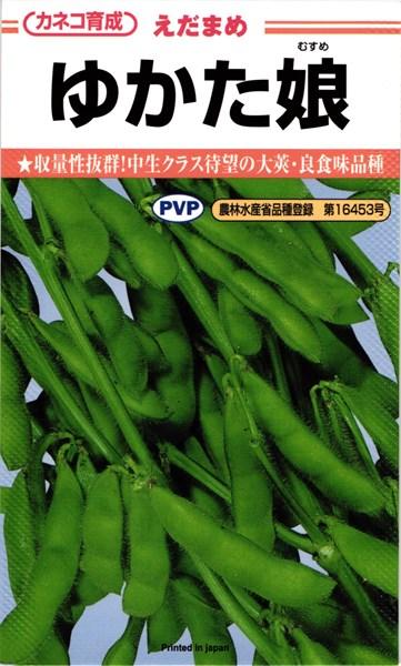 収量性も抜群 価格 中生クラス待望の大莢 良食味品種 カネコ種苗 エダマメ 大好評です 枝豆 PVP 2000粒 ゆかた娘