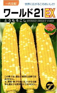 世界に広がるこのおいしさ たね タカヤマシード トウモロコシ 爆買い新作 200粒 コーン ワールド21EX 格安 価格でご提供いたします