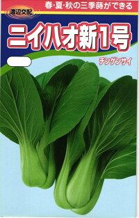 渡辺農事 チンゲンサイ 青梗菜 ニイハオ新1号 2dl