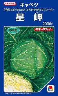 タキイ種苗 キャベツ 星岬 2000粒