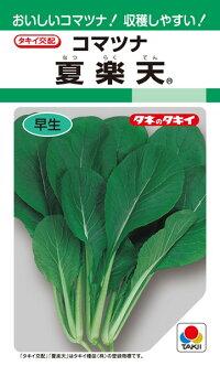 タキイ種苗 コマツナ 小松菜 夏 1L