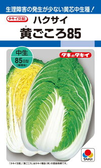 タキイ種苗 ハクサイ 白菜 黄ごころ85        ペレット 小袋 5000粒