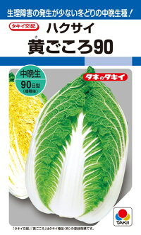 タキイ種苗 ハクサイ 白菜 黄ごころ90 ペレット L5000粒