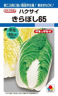 タキイ種苗 ハクサイ 白菜 きらぼし65 ペレット L5000粒