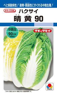 タキイ種苗 ハクサイ 白菜 晴黄90 ペレット L5000粒