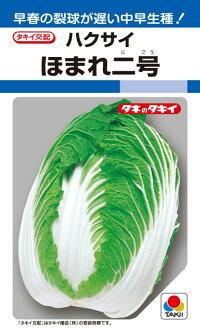 低温結球性にすぐれ 付与 早春の裂球が遅い中早生種 タキイ種苗 商舗 ハクサイ 白菜 1dl ほまれ二号