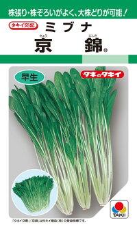 タキイ種苗 ミブナ 壬生菜 京錦 ペレット L1万粒