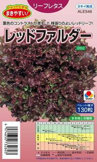 無料 ボリュームのある秋冬 春どり種 タキイ種苗 特別セール品 レタス ペレット レッドファルダー L5000粒
