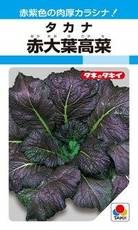 タキイ種苗 葉菜 赤大葉高菜 1L