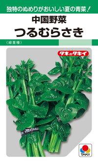 タキイ種苗 中国野菜 つるむらさき(緑茎種)1L