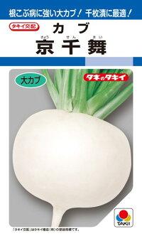 タキイ種苗 カブ 蕪 京千舞 1dl