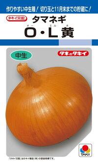 タキイ種苗 タマネギ 玉葱 O・L黄 2dl
