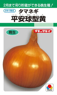 タキイ種苗 タマネギ 玉葱 平安球型黄 1L