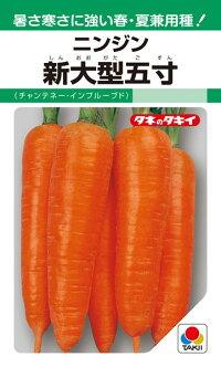 タキイ種苗 ニンジン 人参 新大型五寸(チャンテネー・インプルーブド)1L