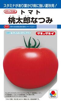 2L ペレット 桃太郎なつみ タキイ種苗 1000粒 トマト