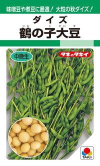 味噌豆や煮豆に最適 大粒の秋ダイズ タキイ種苗 ダイズ 40%OFFの激安セール 鶴の子大豆 絶品 大豆 1L
