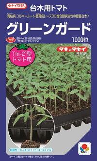 タキイ種苗 台木 トマト用 グリーンガード       ペレット 2L 1000粒