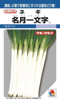 濃緑 日本最大級の品揃え 小葉で耐暑性にすぐれる夏秋どりの一本ネギ タキイ種苗 ネギ DF 初売り 葱 名月一文字