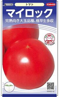 サカタのタネ トマト マイロック 【PRIMAX】1000粒