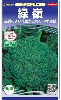 サカタのタネ ブロッコリー 緑嶺 ペレット5000粒