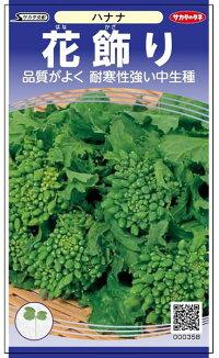 品質がよく 耐寒性強い中生品種 サカタのタネ ハナナ 2dl 迅速な対応で商品をお届け致します 花飾り 花菜 マート