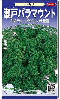 葉は濃緑色で縮みが強く 手数料無料 メイルオーダー しっかりした厚みのある葉 サカタのタネ パセリ 瀬戸パラマウント 20ml