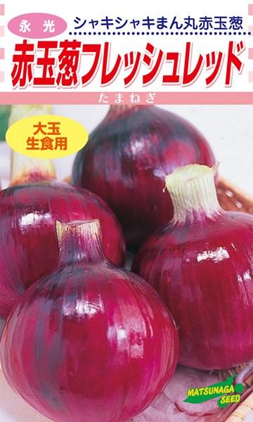 松永種苗 タマネギ 赤玉葱 フレッシュレッド 2dl