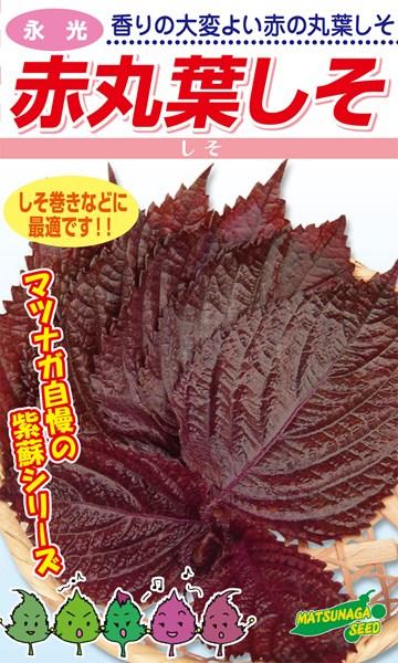 松永種苗 シソ 紫蘇 赤丸葉しそ 1L