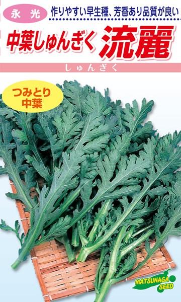 香りよい摘み取りタイプのシュンギク 上等 松永種苗 春菊 中葉しゅんぎく 人気 小袋 流麗