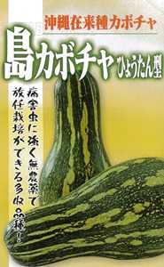 沖縄で古くから栽培されている在来のつるあり南瓜 人気ブレゼント たね フタバ種苗 沖縄 激安 島カボチャ ひょうたん型 1dl