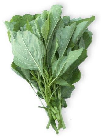 フタバ種苗 濃緑ヒユナ いろこい菜 1L