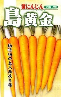 フタバ種苗 黄人参 島黄金 1dl